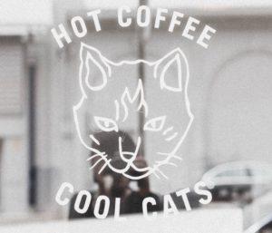 coolcat_evacernikova_consulting