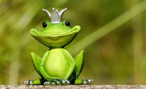 frog1-evacernikova-blog