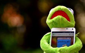 frog4-evacernikova-blog