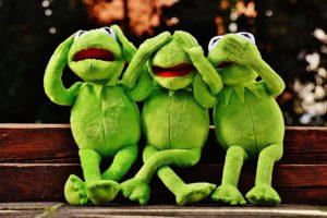 frog2-evacernikova-blog