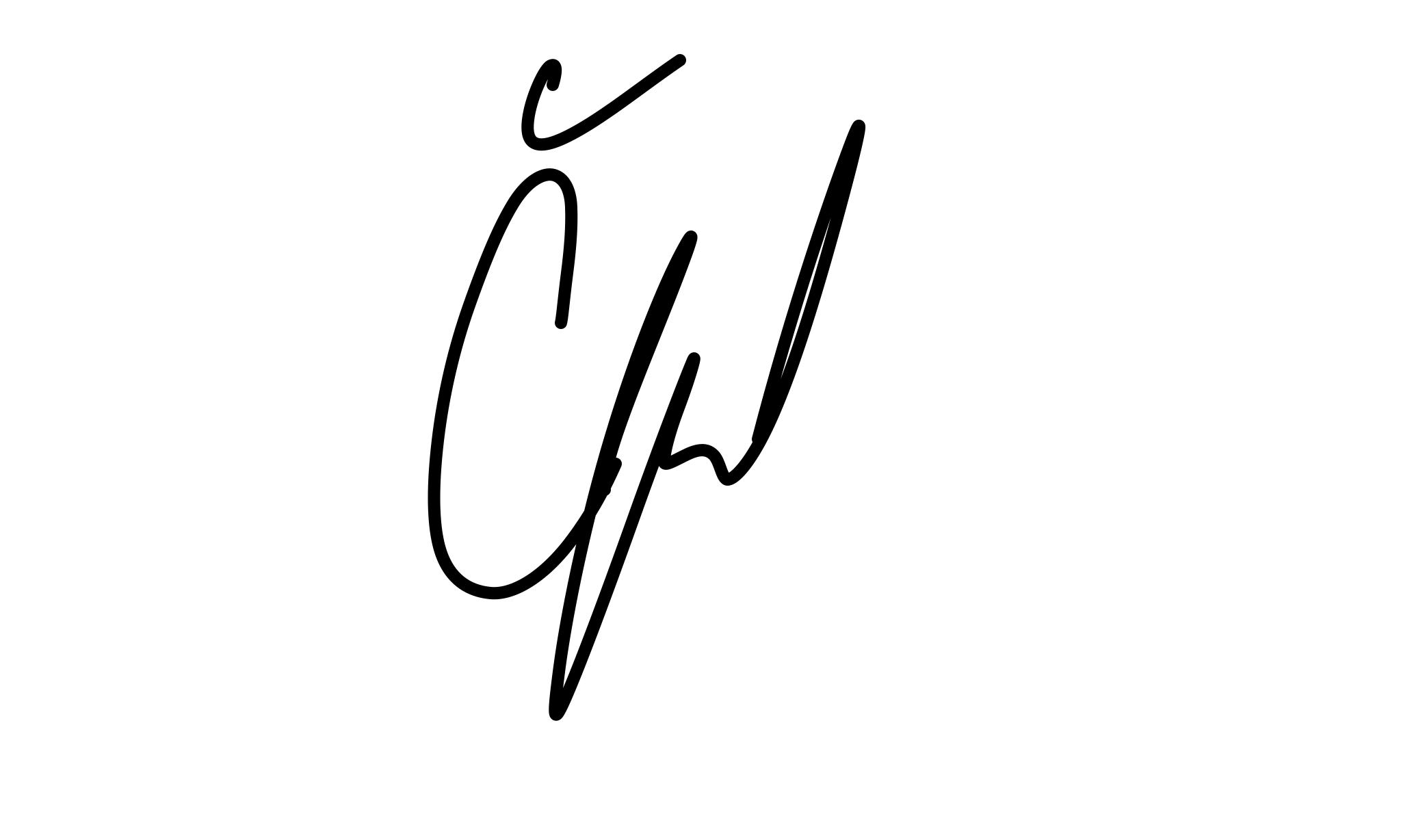 signature-original-evacernikova-copyright
