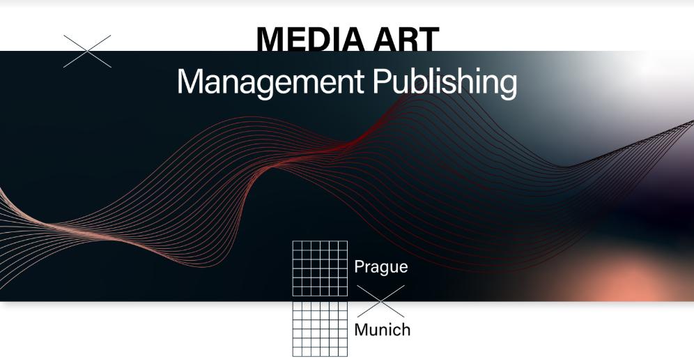 Media Art Management Publishing Facebook